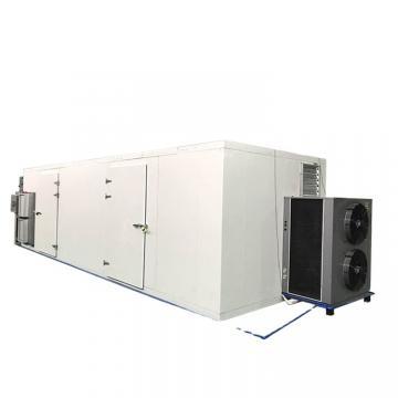 Microwave Type Fresh Food Dryer